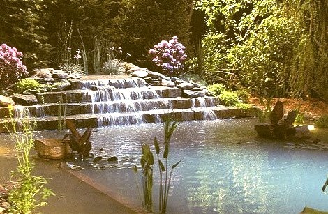 Backyard Swimming Pool, Portland, Maine