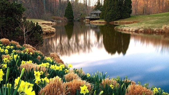 Brookside Gardens in Wheaton, Maryland, USA
