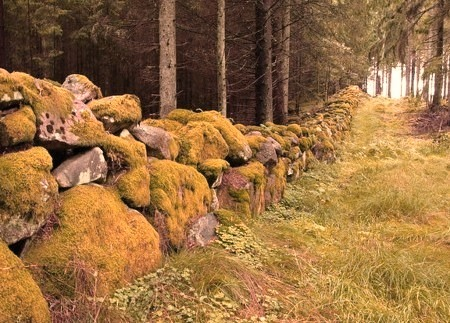 Ancient Stone Wall, Sweden