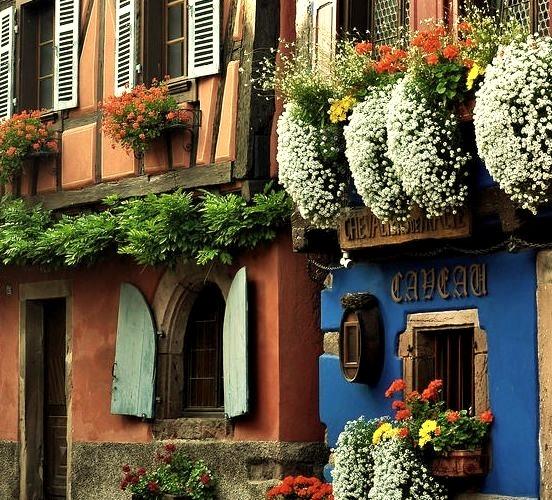 Lovely houses in Niedermorschwihr, Alsace, France