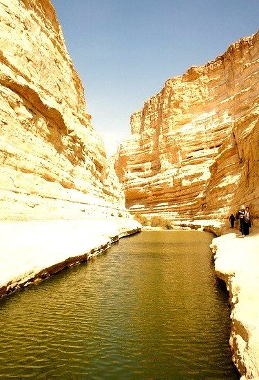 Pool of water in Ein Avdat Canyon, Israel