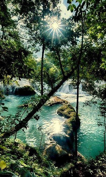 Peering through the trees, Agua Azul Waterfalls in Chiapas, Mexico