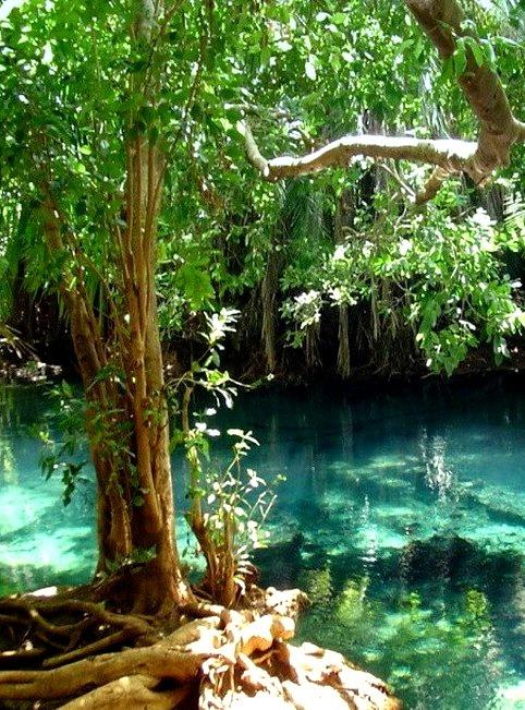 Beautiful pools at Chemka Hot Springs near Moshi, Tanzania